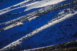 Cratere-Nord-Est-Etna-4588
