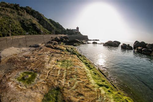 500 Bassa Marea al Porto Vecchio-0098 - Copia