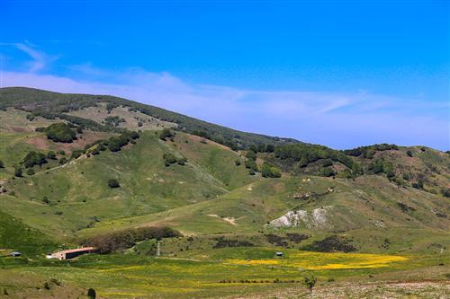 500 Primavera alla Badessa-0004 - Copia