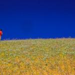 Calanchi in Primavera-0042