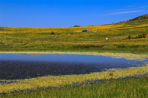 500 Primavera alla Badessa-0026 - Copia