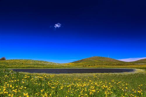 500 Primavera alla Badessa-0033 - Copia