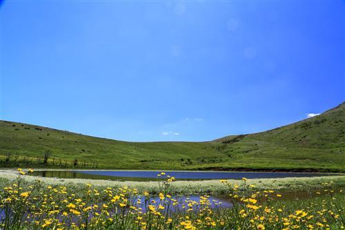 500 Primavera alla Badessa-0045 - Copia