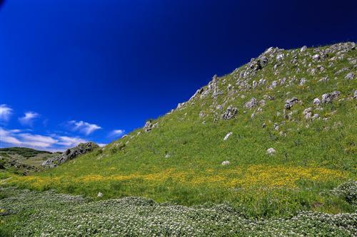 500 Primavera alla Badessa-0047 - Copia