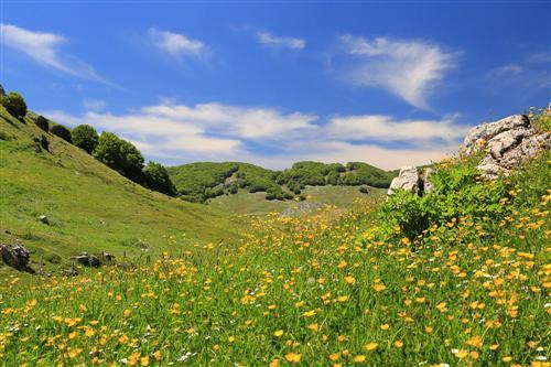 500 Primavera alla Badessa-0050 - Copia