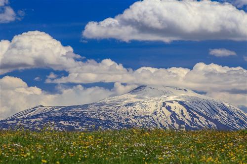 500 Primavera alla Badessa-0062 - Copia